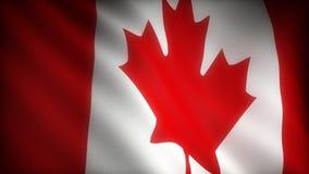 Flagge von Kanada stock video footage