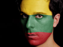 Flagge von Litauen Lizenzfreie Stockfotos