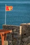 Flagge von Montenegro flatternd in einem Wind Stockbilder