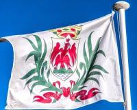 Flagge von Nizza Stockfoto