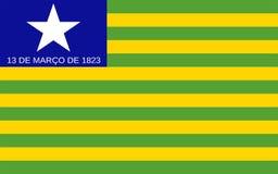 Flagge von Piaui, Brasilien lizenzfreie stockbilder