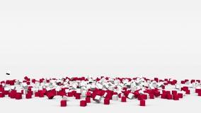 Flagge von Polen schuf von den Würfeln 3d in der Zeitlupe stock video footage