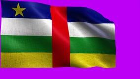 Flagge von Republik Zentralafrika - nahtlose SCHLEIFE stock video