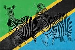 Flagge von Tansania mit Schattenbild von zwei Zebras Stockfotos