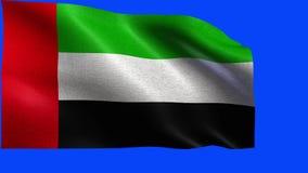 Flagge von Vereinigte Arabische Emirate - SCHLEIFE stock video footage