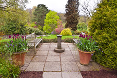 Flagged English garden. English flagged garden with sundial and tulips in terracotta planters in early spring royalty free stock photo