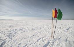 Flaggen auf dem Hintergrund des Winterhimmels Stockfotos