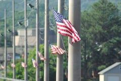 Flaggen auf einer Damm Stockbilder