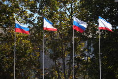Flaggen der Krim und des Russlands Stockbilder