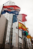 Flaggen des Europäischen Parlaments stockbilder