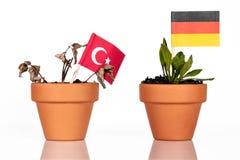 Flaggen des Truthahns und des Deutschlands in einem Blumentopf mit Dürre blühen Stockbilder