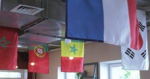 Flaggen von Ländern stock video