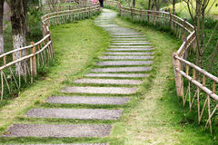 Flagging stone path in garden. A  winding fagging stone path in garden Stock Images