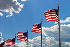 Flaggor av Amerikas förenta stater i Washington DC Arkivbild