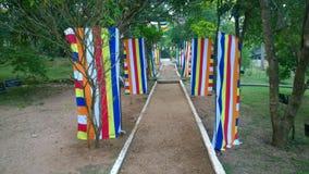 Flaggor av buddisten Royaltyfria Foton