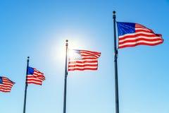 Flaggor av Förenta staterna Royaltyfri Fotografi