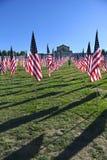 Flaggor av mod utanför helgonet Louis Art Museum Arkivbild