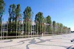 Flaggor av nationerna av världen Royaltyfri Foto