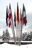 Flaggor av olika nationer i snön Fotografering för Bildbyråer