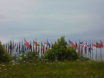 Flaggor av tillstånden Royaltyfria Foton