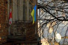 Flaggor av Ukraina och Georgia Royaltyfri Bild