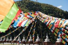 Flaggor för tibetan platå Arkivfoton