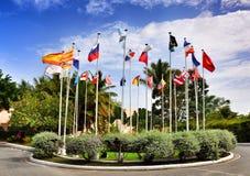 Flaggor från 25 länder världen royaltyfri bild