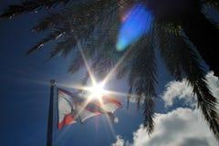 Flaggor mot ljuset Fotografering för Bildbyråer