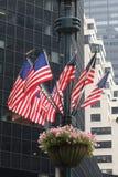 Flaggor och växter på en teckenstolpe Royaltyfria Foton