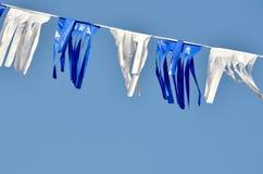 Flaggor på Israel självständighetsdagen Royaltyfria Foton