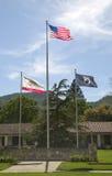 Flaggor som hedrar veteran krigar allra, på veteran hem av Kalifornien i Yountville, Napa Valley Fotografering för Bildbyråer
