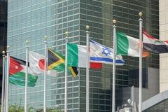 Flaggor utvändiga United Nations som bygger i New York royaltyfri fotografi