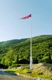 Flagpole con la bandierina. fotografia stock