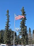 Flagpole Flanked by Pines Stock Photos