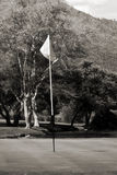 Flagpole, Green & Busy Background. In the foreground, the flag pole with a flapping white flag Stock Photography