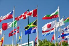 flags мир Стоковая Фотография