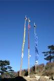 flags молитва Индии северо-восточная Стоковые Изображения