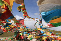 flags молитва Стоковая Фотография