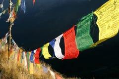 flags молитва стоковые изображения