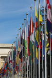 flags соотечественник штольни Стоковые Изображения RF