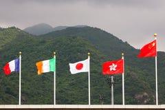 flags соотечественник Стоковая Фотография