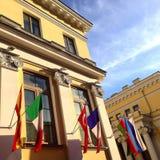 flags соотечественник Стоковое Фото