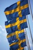 flags шведские языки Стоковые Фотографии RF