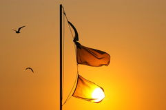 Flags. At the sunset on the beach Stock Photos