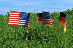 The Flags Royalty Free Stock Image