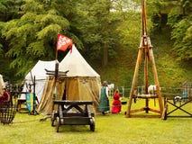празднество flags средневековое небо Стоковые Изображения RF