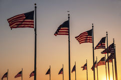 Flags of the Washington Monument Stock Image