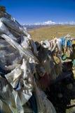 flags bönen tibet Arkivfoton