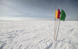 Flags on the background of winter sky Stock Photos