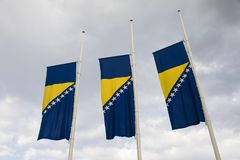 Flags of Bosnia and Herzegovina against blue sky. Three flags of Bosnia and Herzegovina against blue sky Stock Images